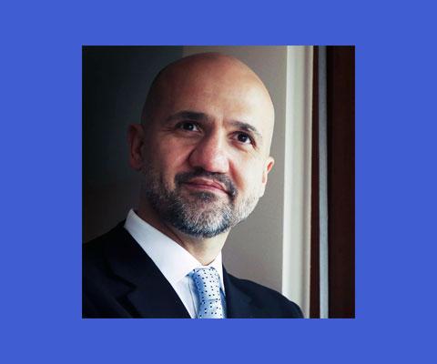 Pavle Pekovic, Consultant